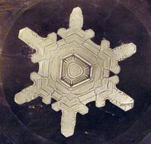 Photographie : Wilson Alwyn Bentley - Wilson Alwyn Bentley ( 1865 – 1931 ) fut le premier à réussir à photographier la structure d'un flocon de neige
