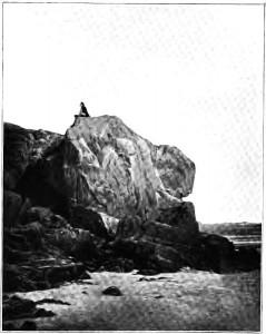 Photographie de Charles Hugo : Victor Hugo sur son rocher de Guernesey.