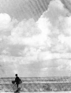 Yvon Traineau - Peintre du XXème siècle du pays du Marais Breton - Initiateur de l'École de Bouin - 1937-2015