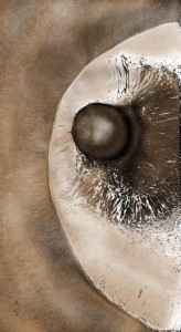 """North polar cap"" - Mine de plomb et numérisation - © Astrid Shriqui Garain - 08.2016"